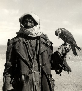Ruwala (Bedouin) hunter with falcon, Northwestern Saudi Arabia, 1952