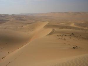 DesertatLiwa